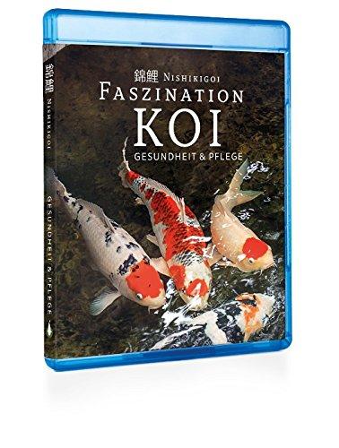 Nishikigoi | Gesundheit und Pflege - Faszination Koi - BluRay Teil 3 | Koi Ratgeber Film 2017