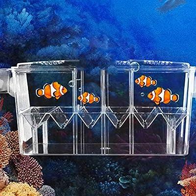 Ausomely Aquarium Ablaichkasten Fischzucht Boxen aus Acryl, Aquarium Fisch Züchter Brutplatz, Brutstätte für Fischzucht, Aquarium, Inkubator,Isolationsbox(27x9x10.5cm)