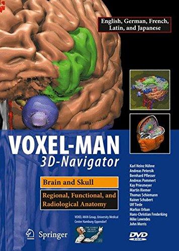 Voxel-Man 3D Navigator