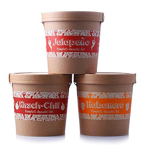 Spicy Garden - Chili-Pflanzen - Anzucht-Set mit Kirsch-Chili, Jalapeno & Habanero - Pflanzen-Kit - Einstieg in die Planzen-Zucht - ideal zum Verschenken