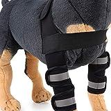 PJDDP Avambraccio Protettore Gomito Protettore Articolazione Gamba Posteriore Cane, Rinforzi Carpale Gamba Anteriore con Cinghie Riflettenti di Sicurezza (Coppia),Nero,L