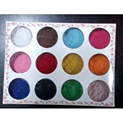 12 color Salon Plush Powder Dust-3D Velvet flocking powder for Nail Art manicure by 350buy