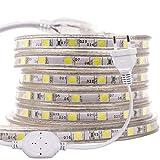 XUNATA LED Streifen,AC 220V 230V 5050 SMD 60leds / m IP65 Wasserdicht Flexibles LED Band mit Netzstecker für Küche Stairway Home Weihnachten Party Dekoration (Warmweiß, 1M)