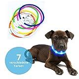 Panorama24 LED Halsband 70 cm, universell kürzbar, Farbe Blau, mit Akku und USB Ladekabel, Schlauchhalsband, Ideal für Ihr Haustier