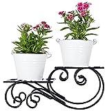 #5: Green Gardenia Iron Table Top Stand With 2 Metal Planter (White)