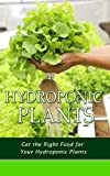 #3: Hydroponic Plants: Get the Right Food for Your Hydroponic Plants