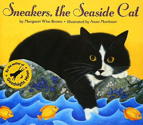 sneakers-the-seaside-cat