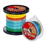 WFT KG STRONG EXACT geflochtene Schnur 480m 0,22mm 32kg, Farbe:multicolor #1D-C 863-022