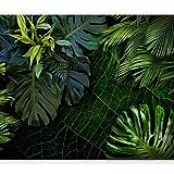 murando - Fototapete tropische Blätter Monstera 350x256 cm - Vlies Tapete - Moderne Wanddeko - Design Tapete - Wandtapete - Wand Dekoration - Natur grün b-C-0224-a-a