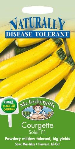 Mr Fothergills???Flux des paquets???L?gumes???courgettes Soleil F1?10?graines