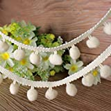 Handicraft-Palace Pom-Pom Mini Bobble Ball Fringe Braid Lace Trimming for Crafting Sewing Hats(White, 10 m)