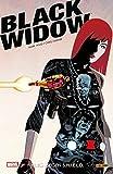 Black Widow: Bd. 1 (2. Serie): Krieg gegen S.H.I.E.L.D.