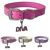 Hundehalsband mit gratis Diva Charm aus Leder in den Größen XS, Small, Medium und Large (XS, Hot Pink)