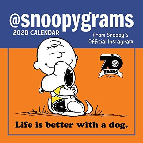 Calendario Snoopy 2020.Peanuts 2020 Mini Wall Calendar Snoopygrams