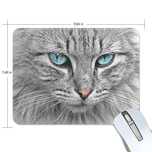 My Daily Kätzchen Maus Pad 25x 19x 0,5cm, Unterseite aus rutschfestem Gummi Pad für Gaming & Büro -