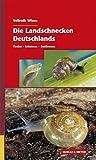 Die Landschnecken Deutschlands: Finden - Erkennen - Bestimmen