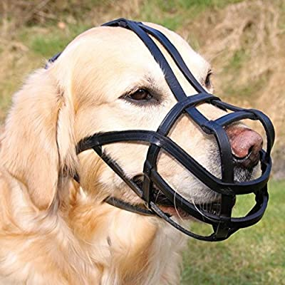 Trixie Bridle Leather Dog Muzzle with Forehead Strap-Parent