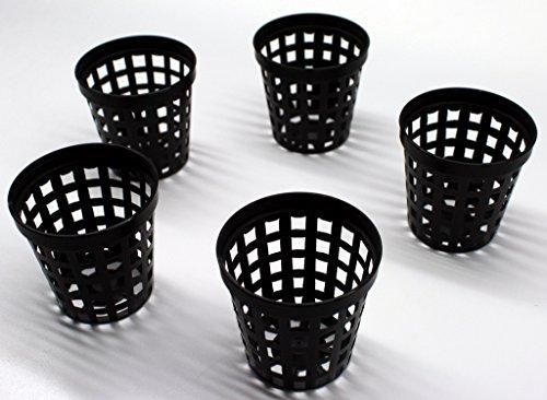 10-Stck-Gittertpfe-Gittertopf-5-cm-Durchmesser-Pflanzenkorb-Rund-5-x-5-cm--x-h