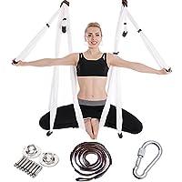 JFJL Conjunto De Columpio De Yoga Aérea - Yoga Hamaca Trapeze Sling Kit + bc9021efb91b