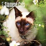 Siamese Cats - Siam-Katzen 2018-18-Monatskalender: Original BrownTrout-Kalender [Mehrsprachig] [Kalender] (Wall-Kalender)