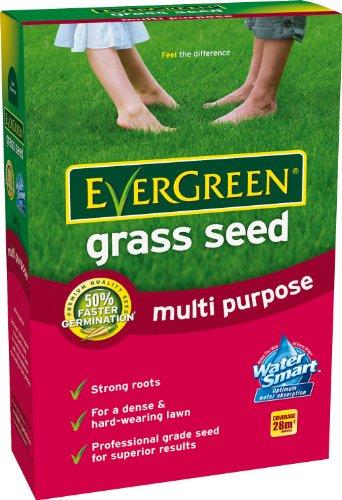 evergreen-gazon-multi-usages-28-m
