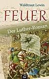 Feuer: Der Luther-Roman bei Amazon kaufen