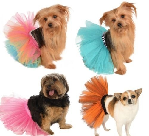 Mädchen Haustier Hund Katze Animal Orange Rainbow Türkis-rosa Tutu Halloween Party Rock Kostüm Kleid Outfit - Rosa, S/M