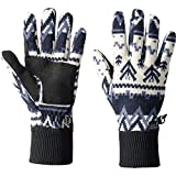 Jack Wolfskin Womens/Ladies Scandic Warm Fleece Knitted Jersey Gloves