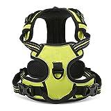 Pettom Einstellbare weich gepolsterter Nein Pull Haustier Hundegeschirr Powergeschirr mit Heavy Duty Griff für Hundetraining oder Walking - Große Hunde Hilfe Brust 49-95 cm variieren von Größe S-M-L-XL