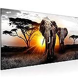 Bilder Afrika Elefant Wandbild 100 x 40 cm Vlies - Leinwand Bild XXL Format Wandbilder Wohnzimmer Wohnung Deko Kunstdrucke Gelb 1 Teilig - Made IN Germany - Fertig zum Aufhängen 007612a
