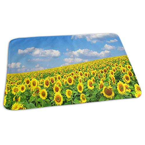 Voxpkrs Changing Pad Scenery of Flowers Baby Diaper Urine Pad Mat Customized Adults Pee Pads Sheet for Any Places for Home Travel Bed Play Stroller Crib Car -