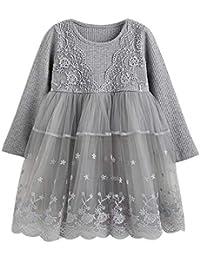 ZODOF Vestido de Princesa de Encaje Rosa para niños Niño pequeño Niños Baby Girl Lace Flower Princess Tulle Party Desfiles Vestidos Vestidos