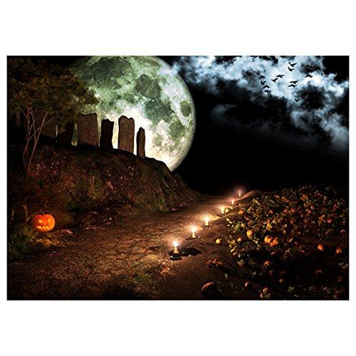 SODIAL(R) Vinyl Fotografie Hintergrund Foto Kulisse Magisches Thema Terror Nacht Berg Kuerbis Lichter, Kerzen, Steine, Rabe, Mond fuer Halloween 2.1 * 1.5M (7 * 5ft)