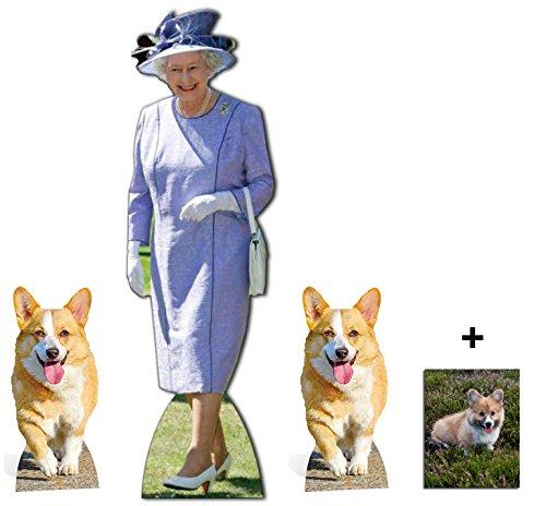 Fan Pack - Königin Elizabeth II. Mit 2 Corgi-Hunden Lebensgrosse Pappfiguren / Stehplatzinhaber / Aufsteller (Drei verpackt) - Enthält 8X10 (25X20Cm) starfoto