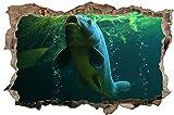 Fisch Karpfen Unterwasserwelt Wandtattoo Wandsticker Wandaufkleber D1031 Größe 70 cm x 110 cm