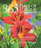 365 Days of Colour