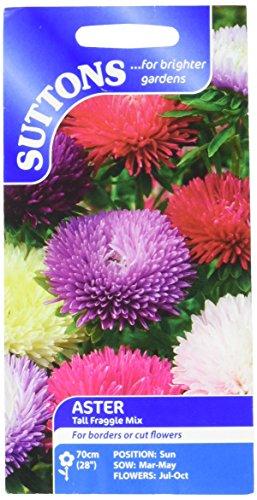 Suttons Seeds 103355 Mélange graines d'Aster de Chine