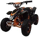 Zipper Scooters Quad électrique pour Enfants - Z20 500W - Orange