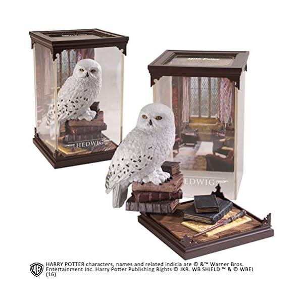 La Colección Noble Criaturas Mágicas - Hedwig 1