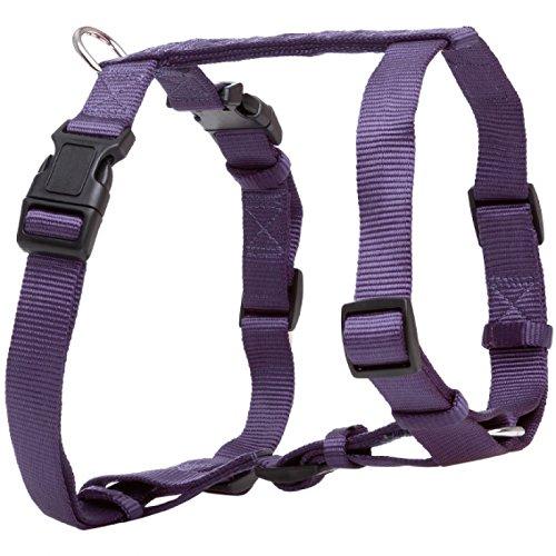 A-11167 Premium Hunde H-geschirr violett (dunkel) (40-65 cm/15 mm)