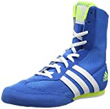 Adidas Unisex-Erwachsene Box Hog 2 Boxschuhe, Blau, 46 EU