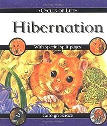 Hibernation (Cycles of Life) by Carolyn Scrace (2002-03-30)