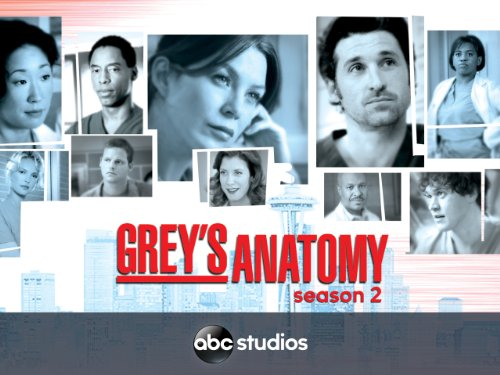 burning series greys anatomy staffel 2