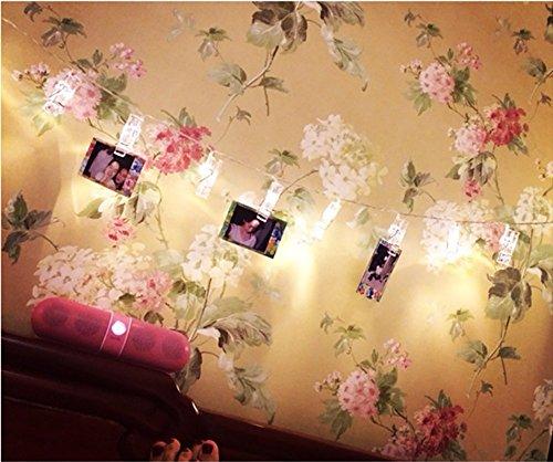 30 led porta foto clip catena luminosa a batteria 3*aa bianco caldo luce fissa e lampeggiante per natale, matrimonio, feste, bar, compleanno