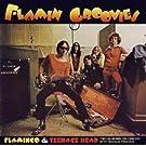 Flamingo/Teenage Head (Remastert & Expanded)