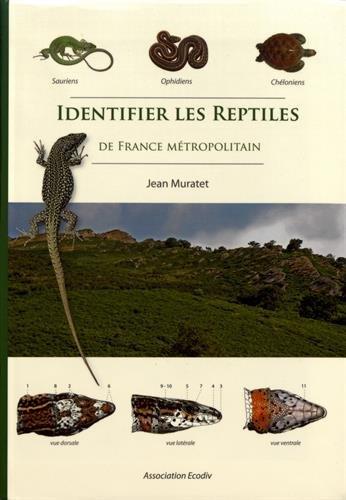 Identifier les reptiles de France métropolitaine