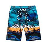 MIRRAY Männer 2019 Hawaiian Trunks Quick Dry Strand Surfen Laufen Schwimmen Strecken Sport Kurze Hose Blau