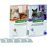 ADVANTAGE 80 4 PIPETAS GATOS MAS DE 4 KILOS