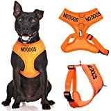 NO DOGS (Not good with other dogs) Orange Colour Coded Non-Pull Front and Back D Ring Padded and Waterproof Vest Dog Harness PREVENTS Accidents By