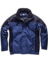 Dickies Mens Industry 300 Waterproof Winter Jacket (XXXXL) (Royal/Navy Blue)